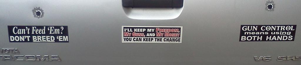 Bumper Sticker - Charlottesville VA - Gun Control