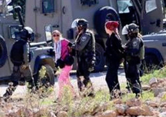 http://www.israellycool.com/2015/11/14/code-pinker-ariel-gold-slips-up-in-description-of-her-arrest/