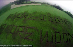 http://www.dailymail.co.uk/news/article-4307378/Trump-golf-course-vandalized-environmentalists.html#v-3792181940836846019
