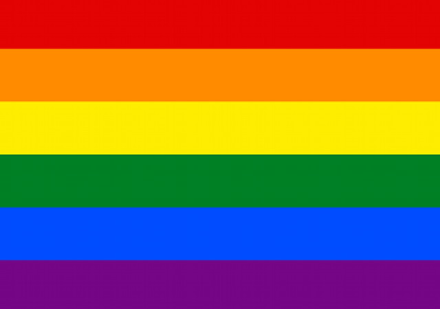https://commons.wikimedia.org/wiki/File:Gay_flag.svg